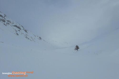 Bernina2020-012